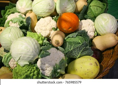 Winter vegetables: pumpkins and cabbages at local farmers market