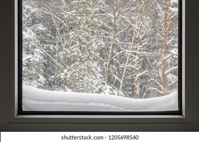 winter view outside the window