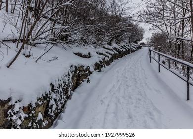 Winter view of a path in Letna gardens in Prague, Czech Republic - Shutterstock ID 1927999526