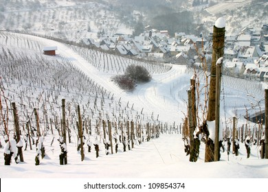 Winter view of  snow covered vineyards with german village in the distance