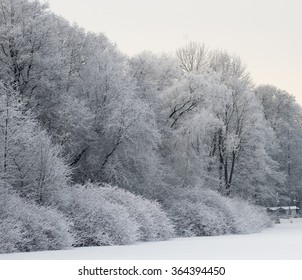 Winter view of trees and objects covered with a thick layer of white fluffy snow