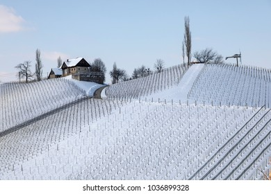 winter in vineyard with windmill named klapotetz in southern styria, an old wine growing country in austria