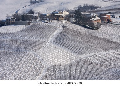 Winter vineyards and village in Oltrepo Pavese, Pavia, Italy.