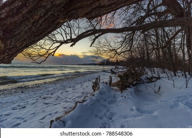 A winter walk along the lakeshore