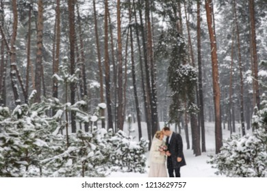 Winter wedding background. Bride and groom in snowy winter forest