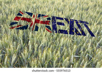 Winter Wheat crop in late June overlaid with the flag of Great Britain