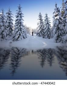 Winter wonder land Norway