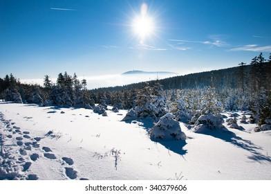 Winter wonderland in the Harz, Germany