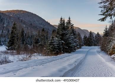 Winter Wonderland in Jacques Cartier Provincial Park, Quebec