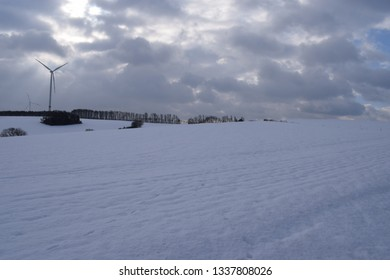 winter wonderland under gloomy sky