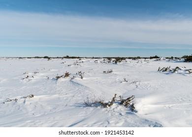 Winter in the World Heritage Stora Alvaret on the island Oland in Sweden