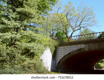 Winterdale Arch in Central Park, New York City, surrounded by tall trees and lush vegetation
