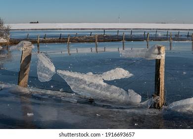 Winterliche Landschaft in den Xantener Rheinauen. Viele Eiszapfen verschönern die Landschaft.