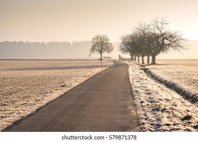 Winterliche Morgenstimmung im Schweizer Mittelland