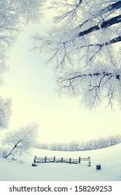 Winter's Tale. fisheye