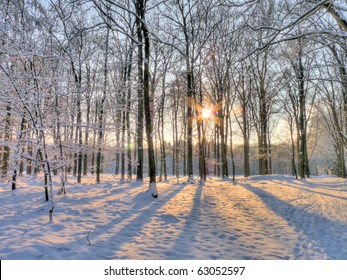 Wintersun in snowy forest (HDR)