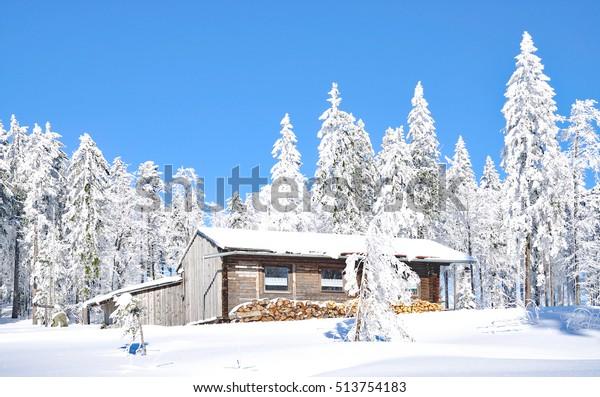 Wintertime in bavarian Forest near Bretterschachten and Bodenmais,,Bavaria,Germany