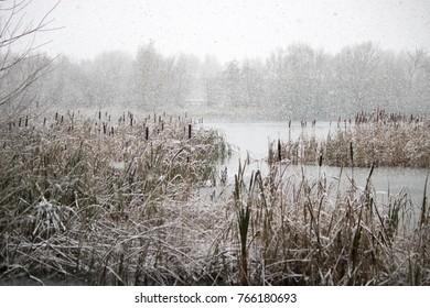 wintery  lake scene