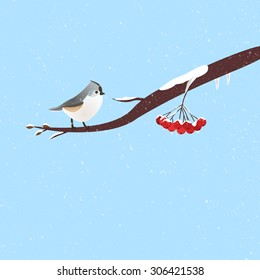 Wintery scene with a cute bird on a branch of red ashberry./Bird on a branch