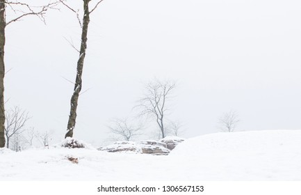 Wintry landscape with snow