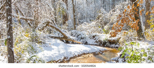 A wintry picturesque scene with a creek and a touch of color from tree foliage on a bright sunny day.  High saturation and highlights to make the colors pop.