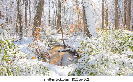 A wintry scene with a creek and a touch of color from tree foliage on a bright sunny day.  High saturation and highlights to make the colors pop.