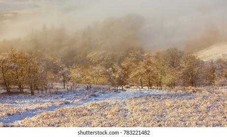 Wintry scene of mist in a snow covered Scottish glen.