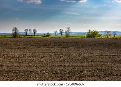 Wiosenne słońce nad polami. Zarośnięte tory kolejowe. Pokręcone drzewa. Droga polna - Shutterstock ID 1984896689