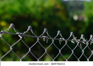 wire netting in a village to protect the yard and garden in a forest