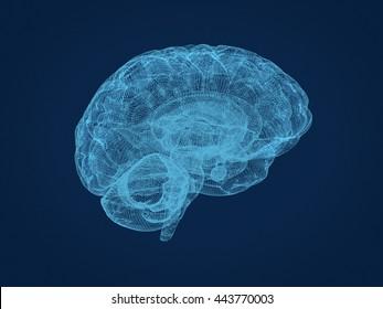 wireframe brain. 3d rendering.