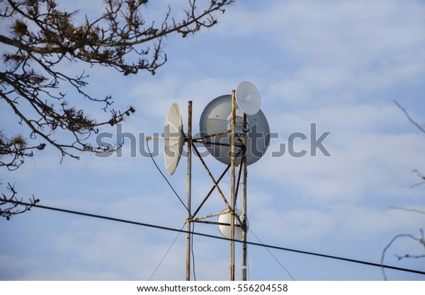 Wireless Internet Dish Antenna Stock Photo (Edit Now) 556204558