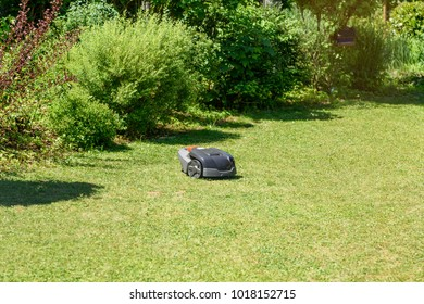Wireless lawn mower robot auto trimming the grass in the garden.