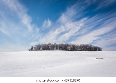 Wispy clouds over a cluster of trees and snow covered farm fields in rural Carroll County, Maryland.