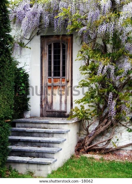 Wisteria covered door