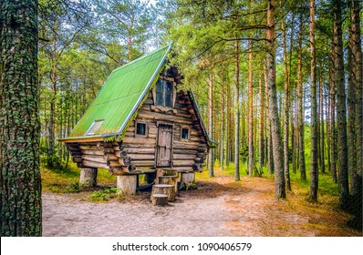 Witch house in deep forest view. Forrest witch cabin