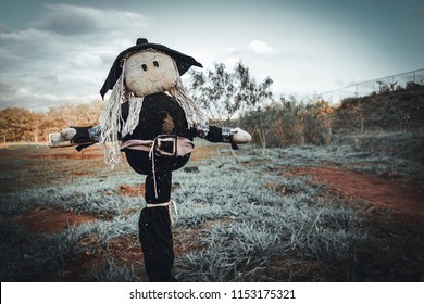 Witch Scarecrow in dark sky