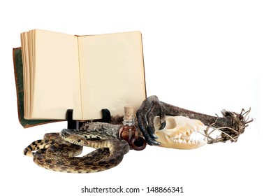 Witches Potion Book with Blank Pages and Room for Your Text with some Ingredients for a Bubbly Halloween Brew