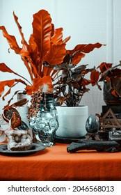 Ambiance automnale de Witchy Halloween avec image de concept de style de vie orange brûlé