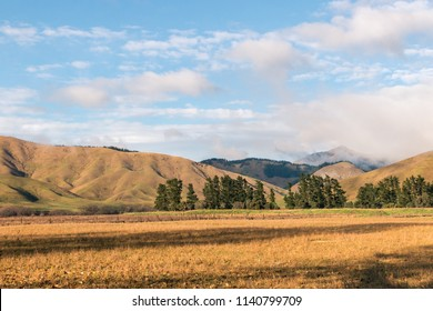 Wither Hills near Blenheim town in New Zealand in autumn