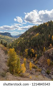 Wolf creek pass in southwestern Colorado, fall leaves and sunny day