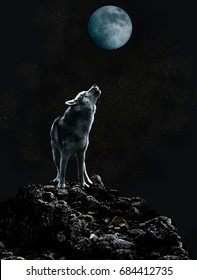 Wolf howls at the moon on a dark night