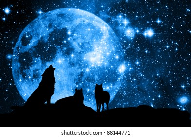 wolves pack in silhouette against a blue starred sky with full moon