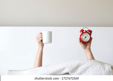 Woman arm hands holding coffee cup and red alarm clock in on bed in bed room. Young girl with two hands holding red clock and cup, drinking coffee after awaking. wake up with fun in morning concept.