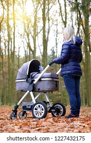 Woman with baby stroller in autumn park.