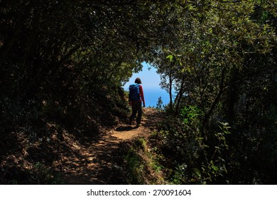 Woman with backpack hiking on dark overgrown path in Cinque Terre, Italy