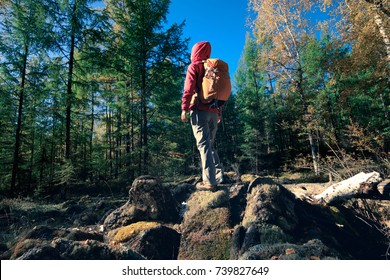 woman backpacker hiking in the autumn forest