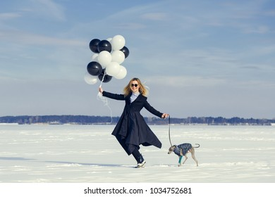 A woman with balloons and a dog of the Italian Greyhound breed has fun in the winter on snow, in the winter