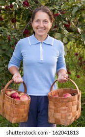 woman with  baskets of apples in  garden.