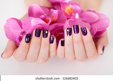 Woman with beautifully manicured purple nails holding a handful of pink flower petals
