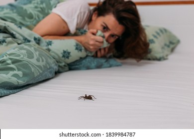 Woman in bedroom terrified by big spider crawling over her bed - Shutterstock ID 1839984787